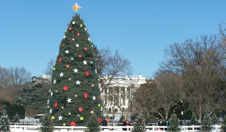 Christmas Time In Washington Dc.5 Unique Christmas Break Vacations Catch A Journey